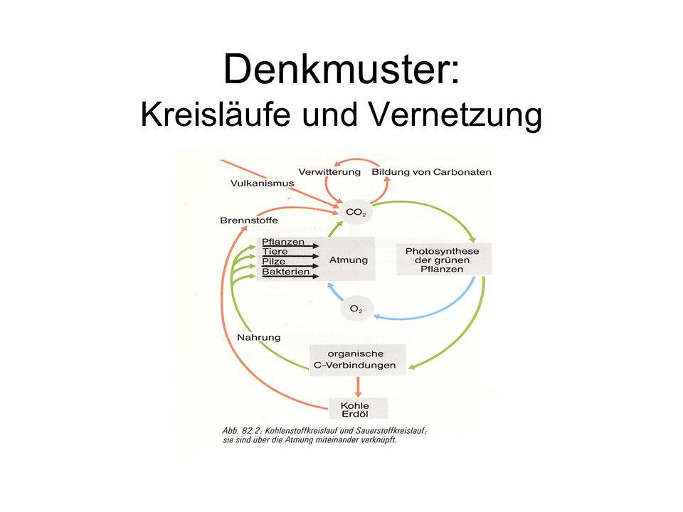 Denkmuster: Experiment und Evidenz
