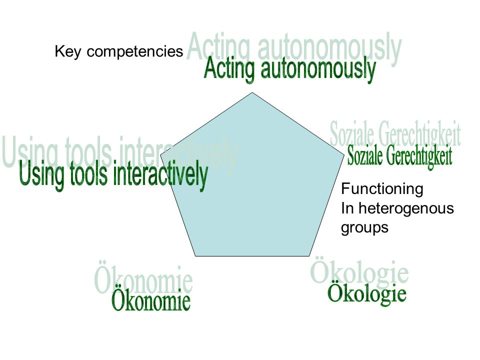Functioning In heterogenous groups Key competencies