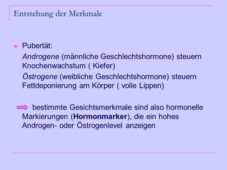 Entstehung der Merkmale Pubertät: - Androgene (männliche Geschlechtshormone) steuern Knochenwachstum ( Kiefer) - Östrogene (weibliche Geschlechtshormone) steuern Fettdeponierung am Körper ( volle Lippen) bestimmte Gesichtsmerkmale sind also hormonelle Markierungen (Hormonmarker), die ein hohes Androgen- oder Östrogenlevel anzeigen