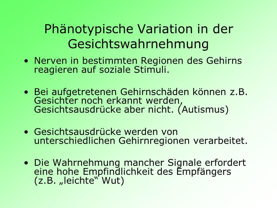 Phänotypische Variation in der Gesichtswahrnehmung Nerven in bestimmten Regionen des Gehirns reagieren auf soziale Stimuli. Bei aufgetretenen Gehirnsc