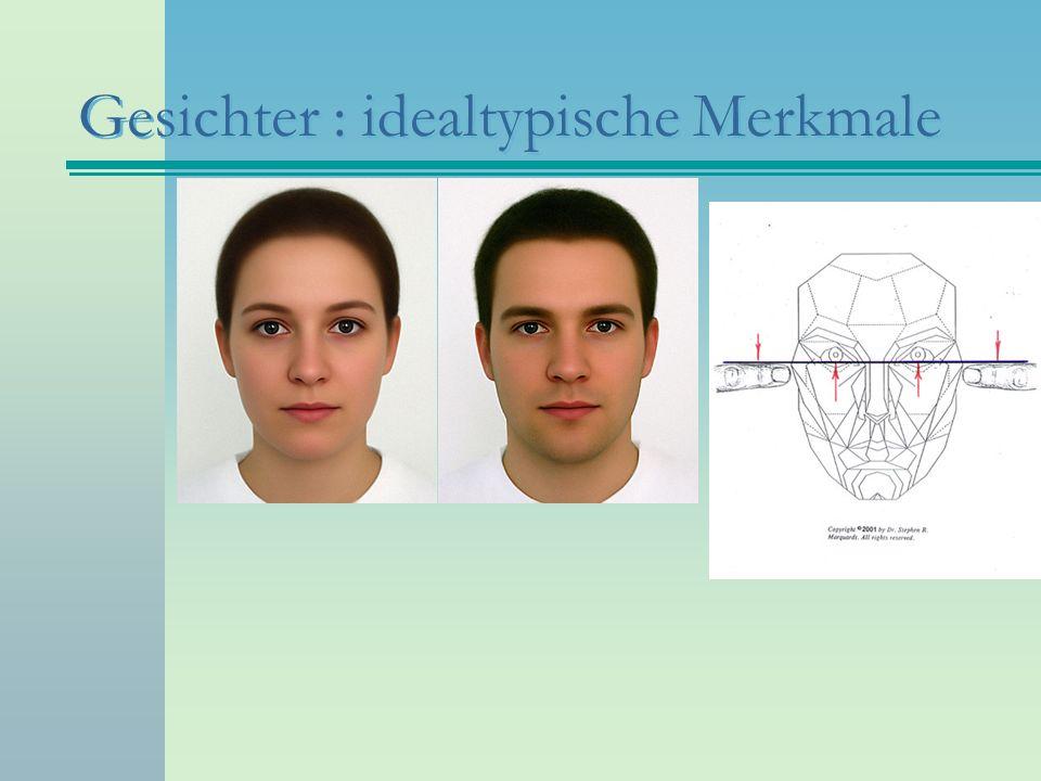 Gesichter : idealtypische Merkmale