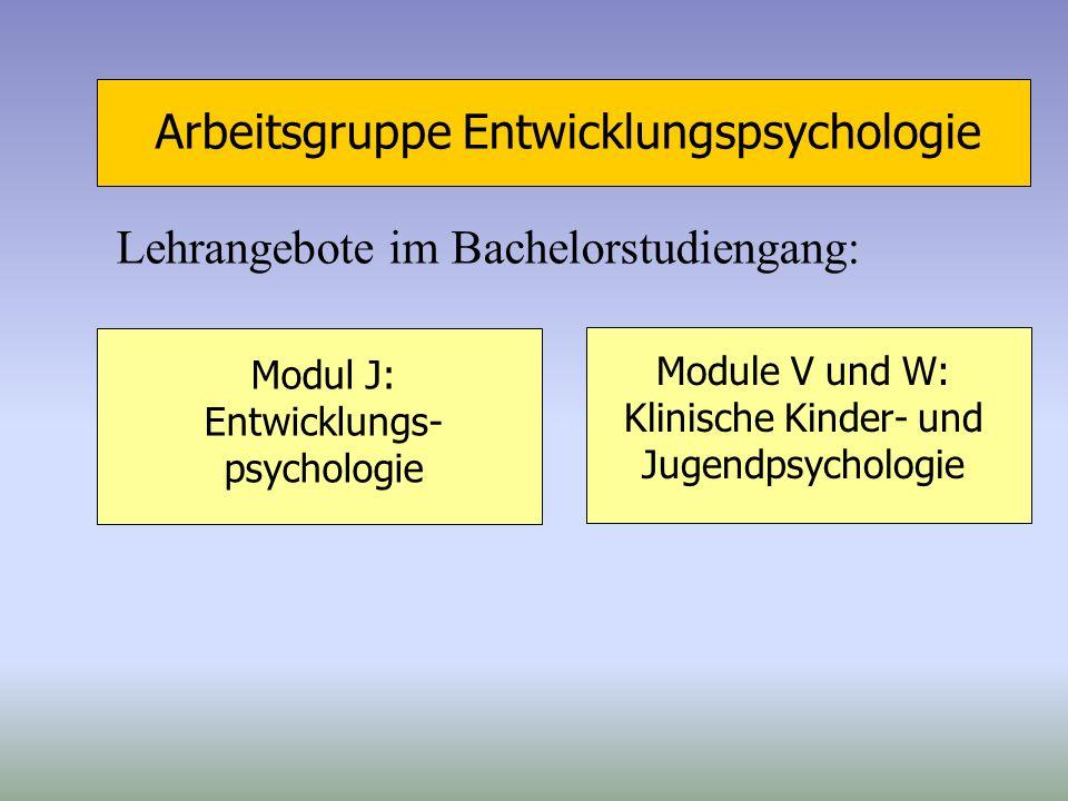 Arbeitsgruppe Entwicklungspsychologie Lehrangebote im Bachelorstudiengang: Modul J: Entwicklungs- psychologie Module V und W: Klinische Kinder- und Ju