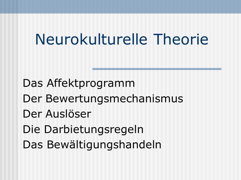 Neurokulturelle Theorie Das Affektprogramm Der Bewertungsmechanismus Der Auslöser Die Darbietungsregeln Das Bewältigungshandeln
