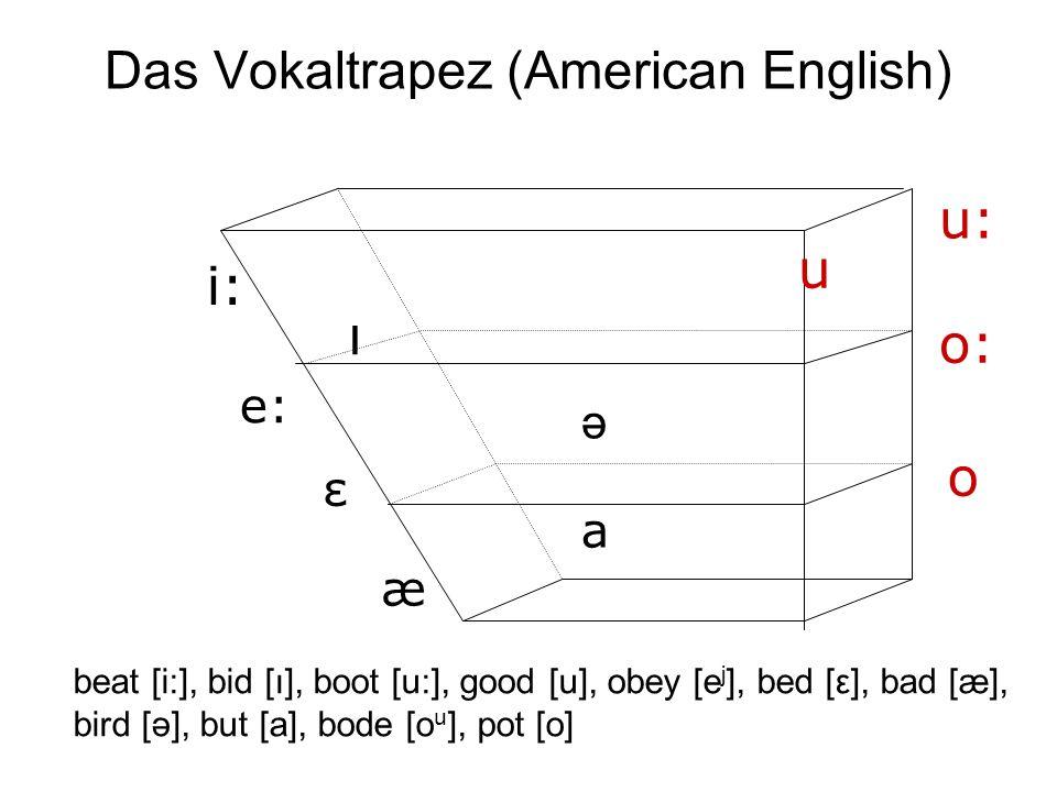 Das Vokaltrapez (American English) i: e: æ a u: o: o ə ı u ε beat [i:], bid [ı], boot [u:], good [u], obey [e j ], bed [ε], bad [æ], bird [ə], but [a]