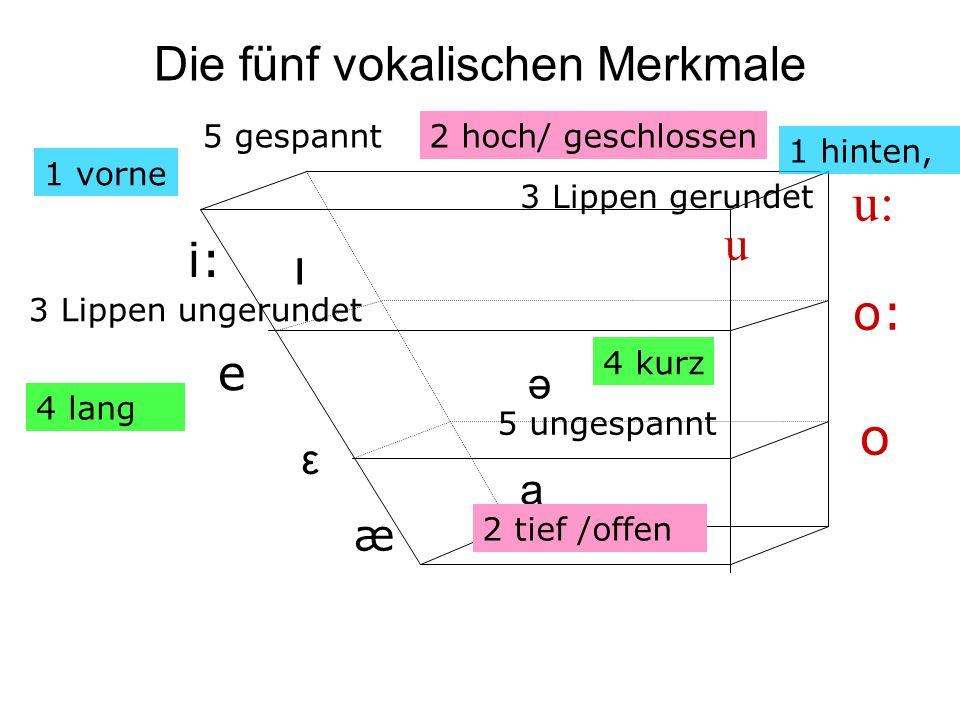 Die fünf vokalischen Merkmale i: e æ a u: o: o 1 vorne 2 tief /offen 1 hinten, 3 Lippen ungerundet 5 ungespannt ə ı u 5 gespannt 4 lang 4 kurz 3 Lippe