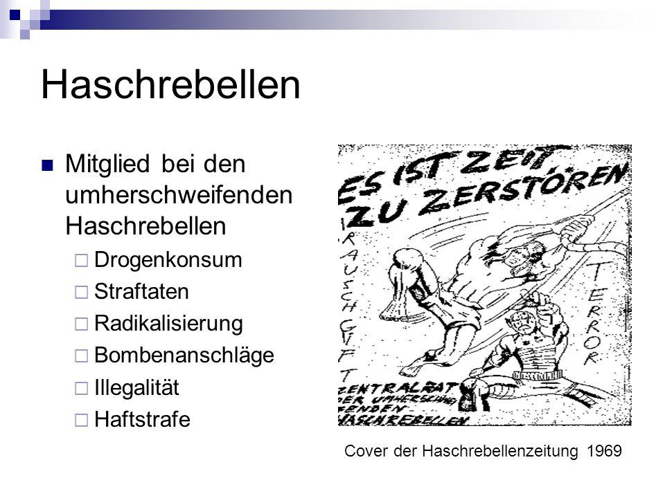 Haschrebellen Mitglied bei den umherschweifenden Haschrebellen Drogenkonsum Straftaten Radikalisierung Bombenanschläge Illegalität Haftstrafe Cover de