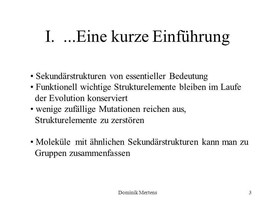 Dominik Mertens3 Sekundärstrukturen von essentieller Bedeutung Funktionell wichtige Strukturelemente bleiben im Laufe der Evolution konserviert wenige