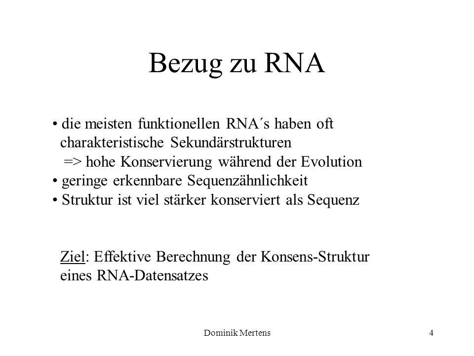 Dominik Mertens4 die meisten funktionellen RNA´s haben oft charakteristische Sekundärstrukturen => hohe Konservierung während der Evolution geringe er