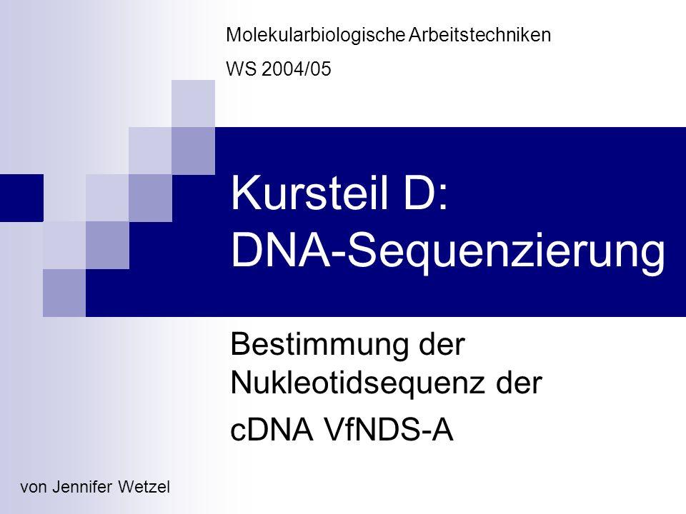 Gliederung D1: Extraktion der Plasmid-DNA Animpfen der Bakterienkulturen DNA-Gewinnung D2: Agarose-Gelelektrophorese D3: Sequenzierung der Plasmid-DNA Cycle-Sequencing Reaktionsaufreinigung Kapillarelektrophorese D4: DNA-Sequenzauswertung Vorprozessierung (Basecalling, Vector-clipping) Assembly