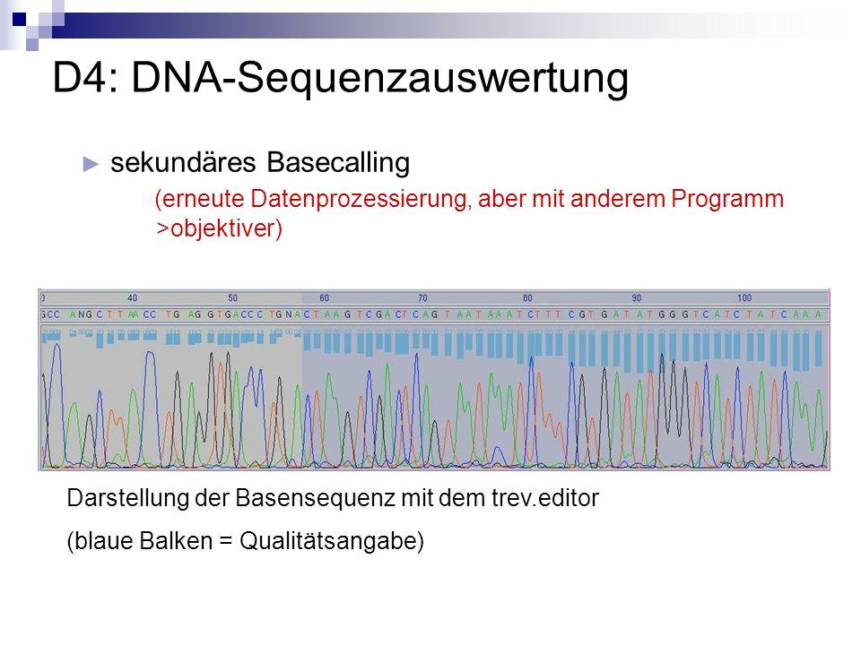 D4: DNA-Sequenzauswertung sekundäres Basecalling (erneute Datenprozessierung, aber mit anderem Programm >objektiver) Darstellung der Basensequenz mit