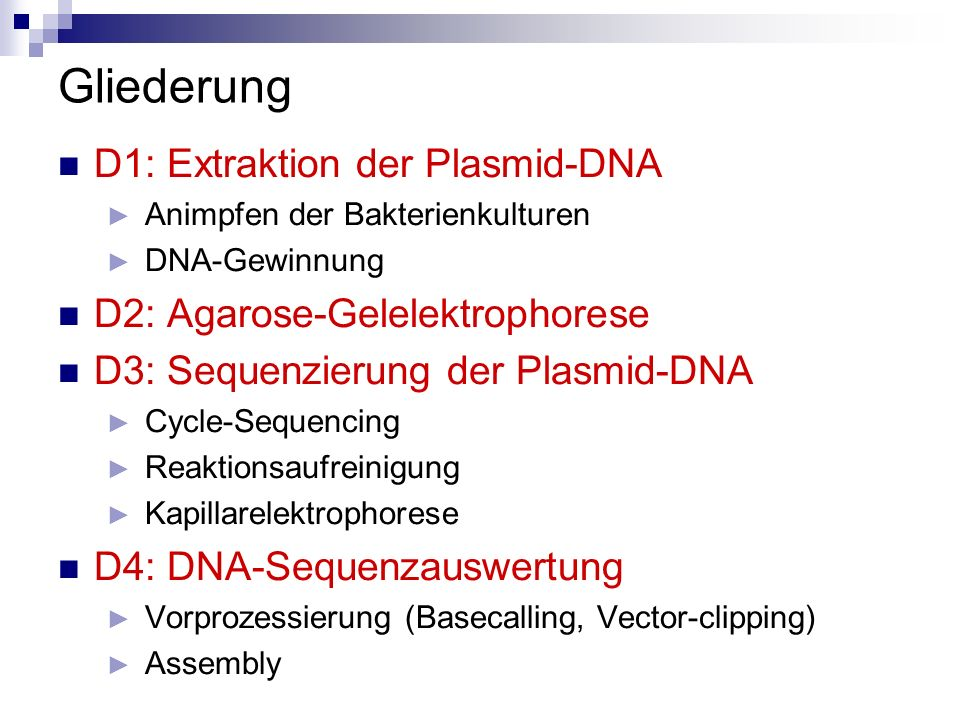 Gliederung D1: Extraktion der Plasmid-DNA Animpfen der Bakterienkulturen DNA-Gewinnung D2: Agarose-Gelelektrophorese D3: Sequenzierung der Plasmid-DNA