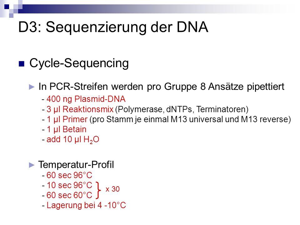 D3: Sequenzierung der DNA Cycle-Sequencing In PCR-Streifen werden pro Gruppe 8 Ansätze pipettiert - 400 ng Plasmid-DNA - 3 µl Reaktionsmix (Polymerase