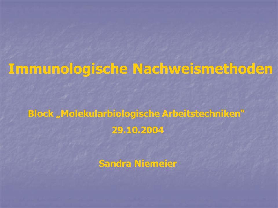 Immunologische Nachweismethoden Block Molekularbiologische Arbeitstechniken 29.10.2004 Sandra Niemeier
