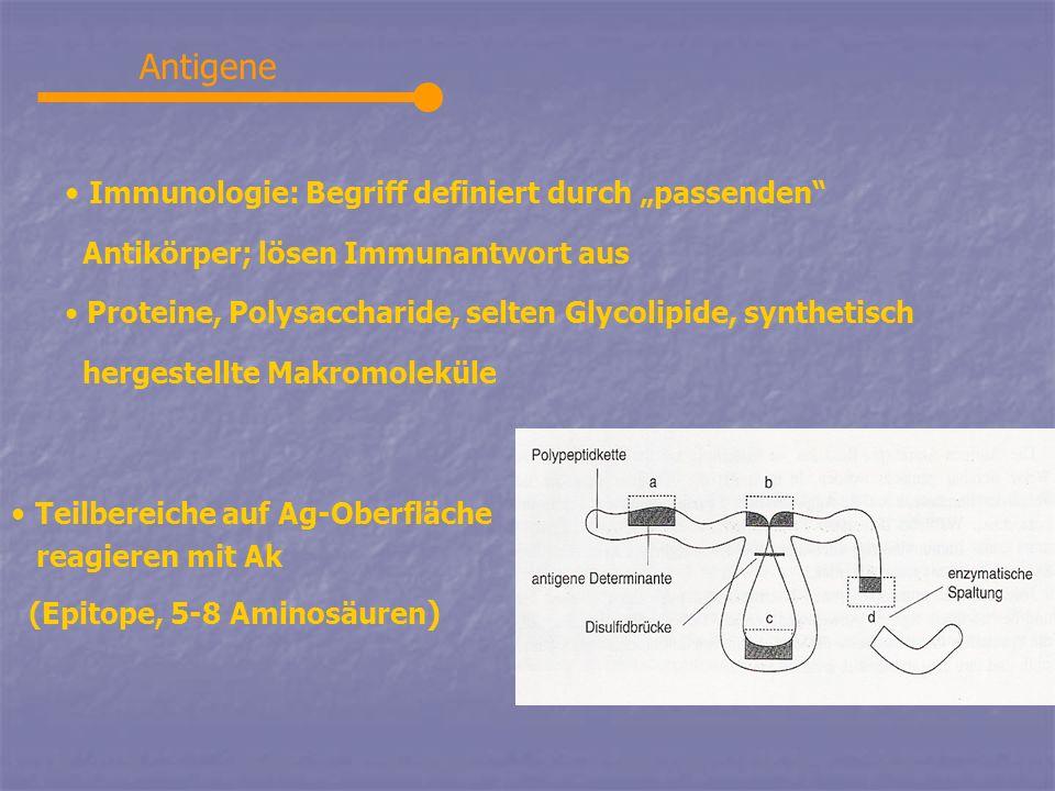 Antigene Immunologie: Begriff definiert durch passenden Antikörper; lösen Immunantwort aus Proteine, Polysaccharide, selten Glycolipide, synthetisch h