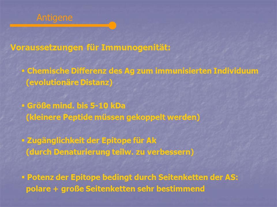 Antigene Voraussetzungen für Immunogenität: Chemische Differenz des Ag zum immunisierten Individuum (evolutionäre Distanz) Größe mind. bis 5-10 kDa (k