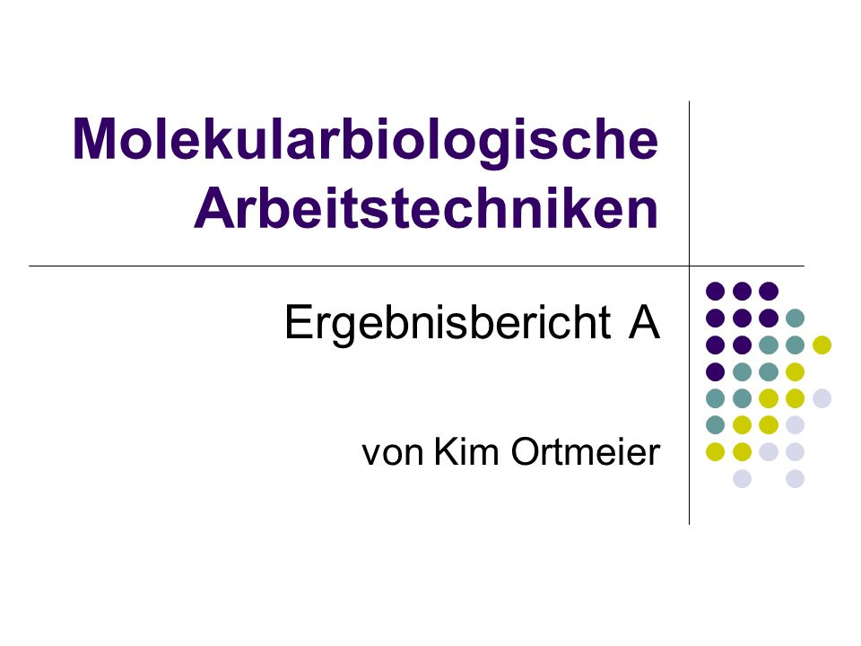 Molekularbiologische Arbeitstechniken Ergebnisbericht A von Kim Ortmeier