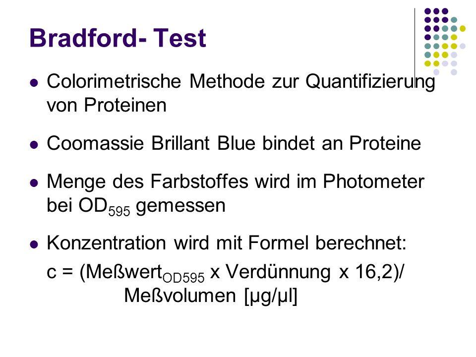 Bradford- Test Colorimetrische Methode zur Quantifizierung von Proteinen Coomassie Brillant Blue bindet an Proteine Menge des Farbstoffes wird im Phot