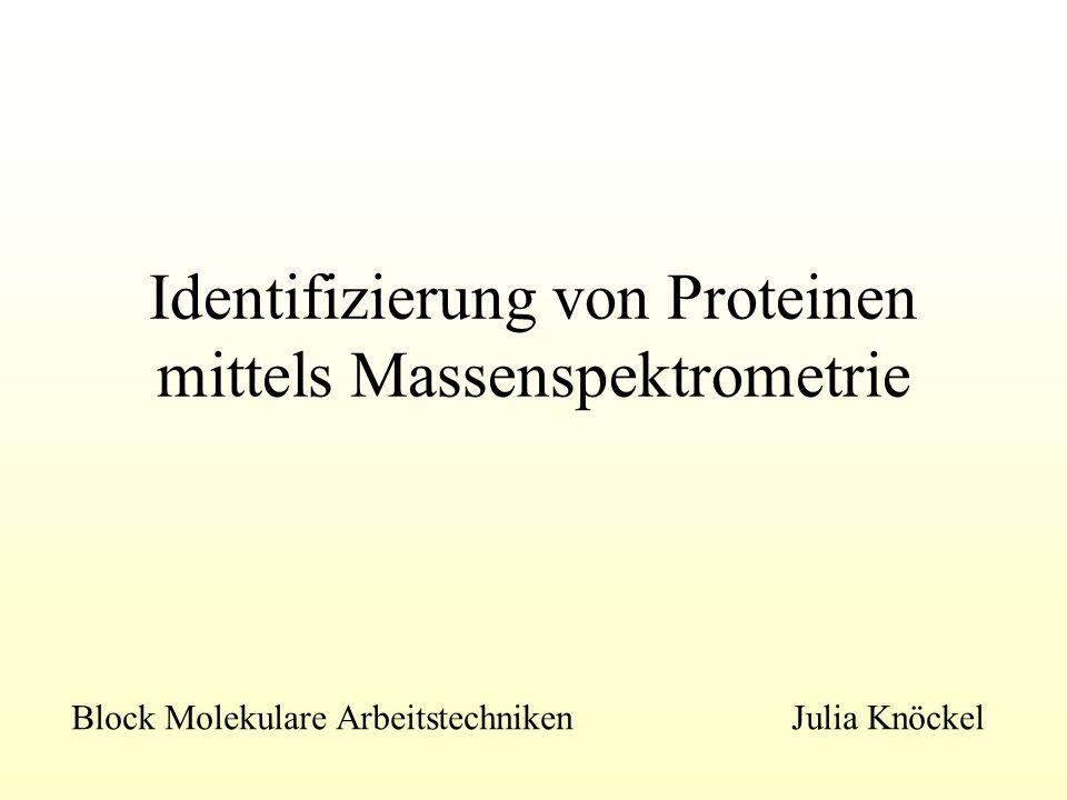 Detektion der Ionen Erzeugung einer Elektronenkaskade in einem Sekundärelektronenvervielfacher ( SEV) analoges Signal Analoges Signal wird digitalisiert und an einen PC geleitet Analyse der Messergebnisse durch Vergleich mit Datenbanken Datenbank- Typen: 1.Vollständige Proteinsequenzen 2.Expressed- sequence- tag Databases ( EST): kurze Sequenzen aus zufälliger Sequenzierung von cDNA- Bibliotheken 3.Genom- Datenbanken Quelle: Lottspeich: Bioanalytik, 1998 MALDI-TOF- Spektrum des Peptids Angiotensin II