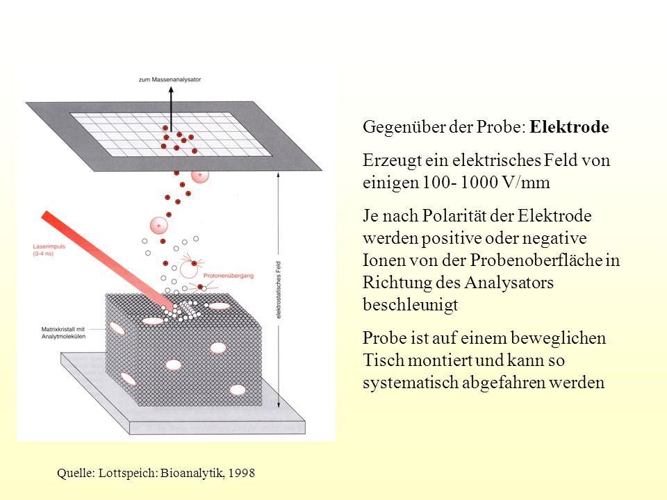 Massenanalyse: Flugzeit- Massenspektrometer ( Time- of- flight- Analysatoren) Genaue Messung der Zeit, die zwischen Start der Elektronen in der Quelle bis zum Eintreffen auf dem Detektor vergeht Kleine Ionen sind schneller als große Da m/z ~ t², lässt sich die Masse aus der Flugzeit berechnen Kalibrierung über Referenzsubstanzen mit bekannter Masse Typische Flugzeiten: wenige μs bis einige 100 μs Länge der Driftstrecken 1- 4 m Quelle: Lottspeich: Bioanalytik, 1998