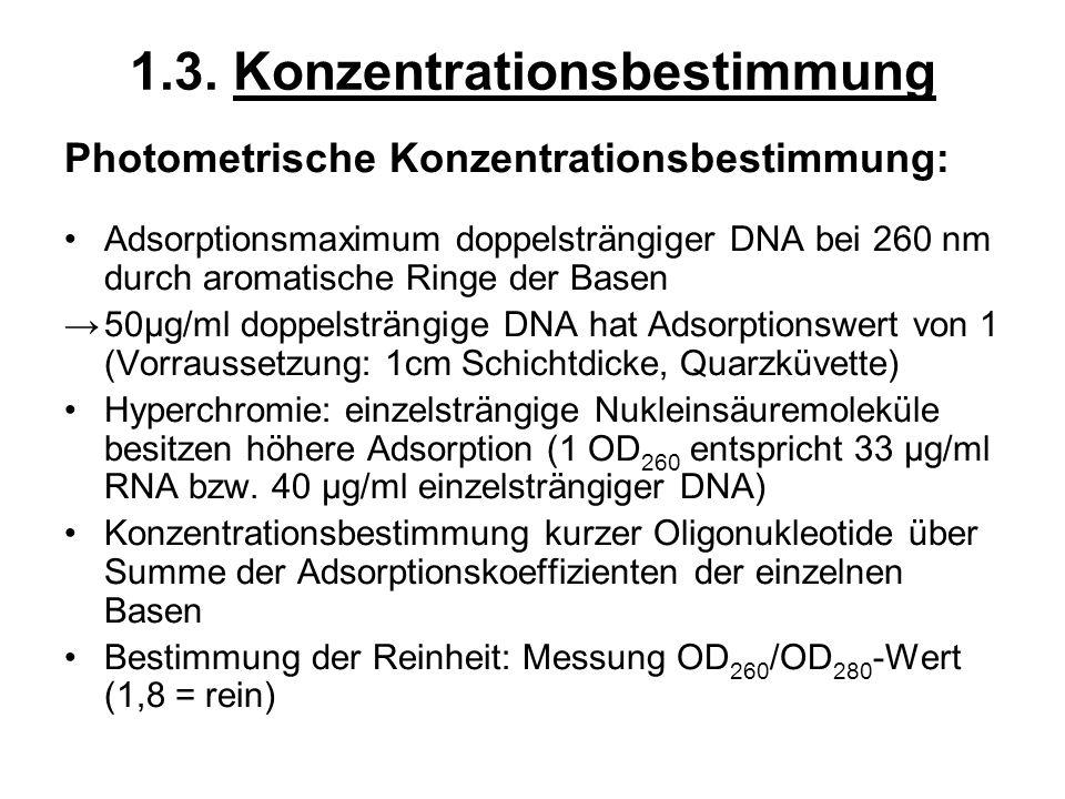 1.3. Konzentrationsbestimmung Photometrische Konzentrationsbestimmung: Adsorptionsmaximum doppelsträngiger DNA bei 260 nm durch aromatische Ringe der