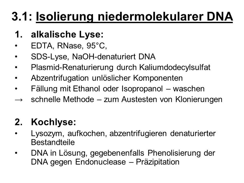 3.1: Isolierung niedermolekularer DNA 1.alkalische Lyse: EDTA, RNase, 95°C, SDS-Lyse, NaOH-denaturiert DNA Plasmid-Renaturierung durch Kaliumdodecylsu