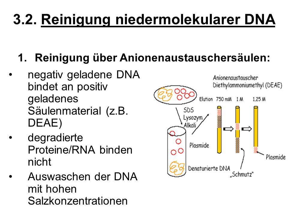 3.2. Reinigung niedermolekularer DNA negativ geladene DNA bindet an positiv geladenes Säulenmaterial (z.B. DEAE) degradierte Proteine/RNA binden nicht
