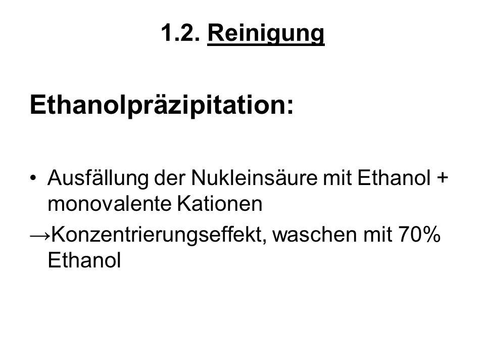 1.2. Reinigung Ethanolpräzipitation: Ausfällung der Nukleinsäure mit Ethanol + monovalente Kationen Konzentrierungseffekt, waschen mit 70% Ethanol