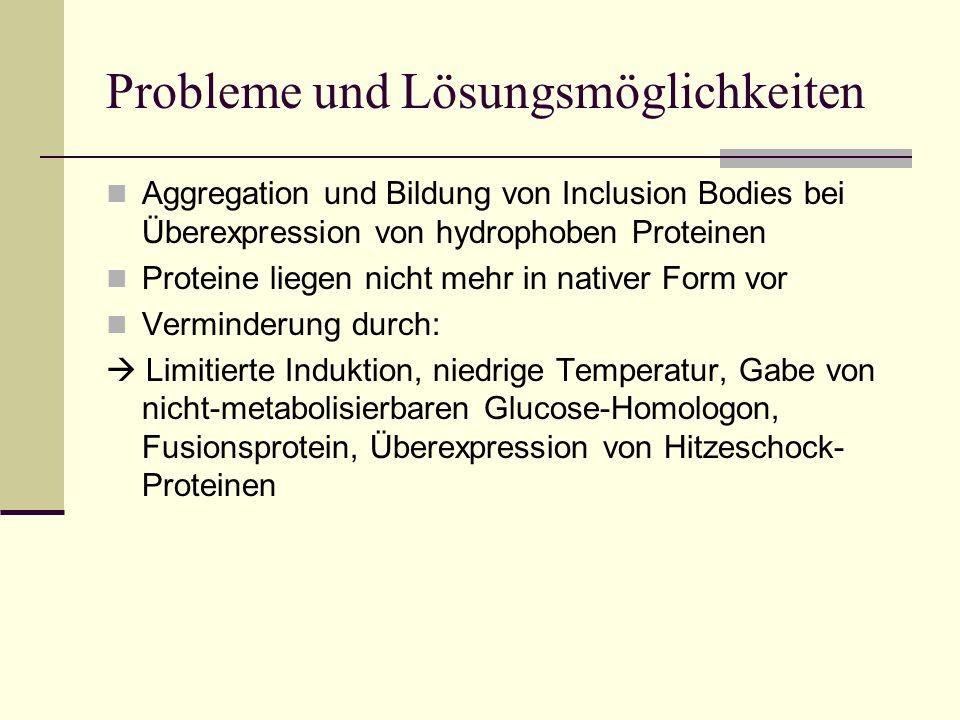 Probleme und Lösungsmöglichkeiten Aggregation und Bildung von Inclusion Bodies bei Überexpression von hydrophoben Proteinen Proteine liegen nicht mehr