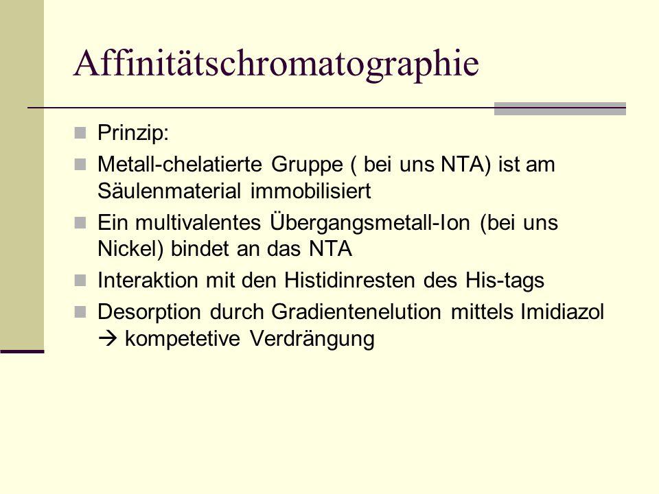 Affinitätschromatographie Prinzip: Metall-chelatierte Gruppe ( bei uns NTA) ist am Säulenmaterial immobilisiert Ein multivalentes Übergangsmetall-Ion
