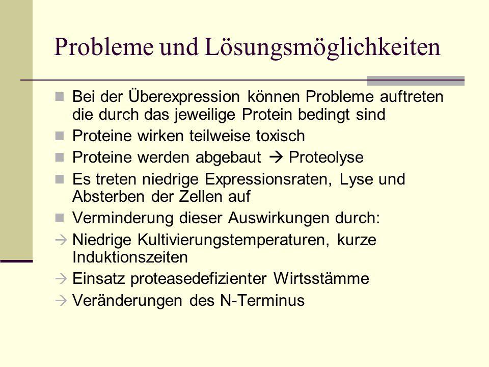 Probleme und Lösungsmöglichkeiten Bei der Überexpression können Probleme auftreten die durch das jeweilige Protein bedingt sind Proteine wirken teilwe
