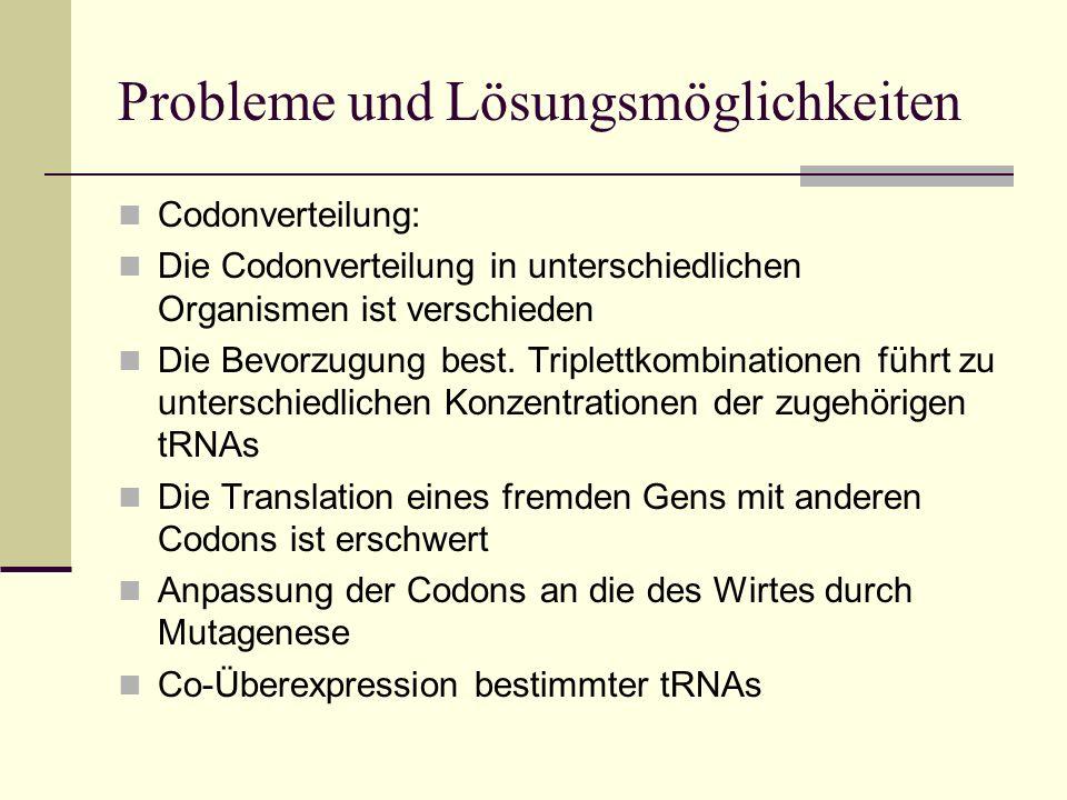 Probleme und Lösungsmöglichkeiten Codonverteilung: Die Codonverteilung in unterschiedlichen Organismen ist verschieden Die Bevorzugung best. Triplettk