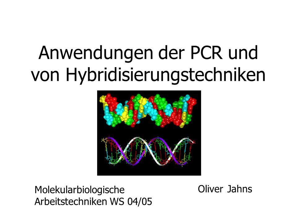 Anwendungen der PCR und von Hybridisierungstechniken Oliver Jahns Molekularbiologische Arbeitstechniken WS 04/05