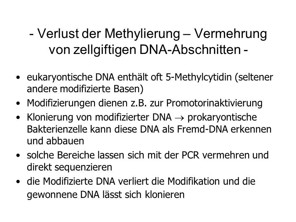 - Verlust der Methylierung – Vermehrung von zellgiftigen DNA-Abschnitten - eukaryontische DNA enthält oft 5-Methylcytidin (seltener andere modifiziert