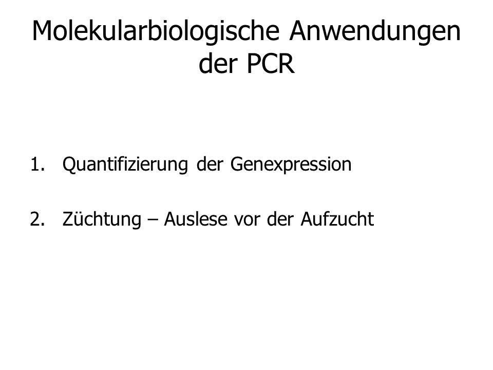 Molekularbiologische Anwendungen der PCR 1.Quantifizierung der Genexpression 2.Züchtung – Auslese vor der Aufzucht