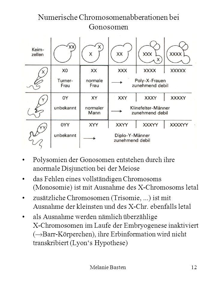 Melanie Basten12 Numerische Chromosomenabberationen bei Gonosomen Polysomien der Gonosomen entstehen durch ihre anormale Disjunction bei der Meiose da