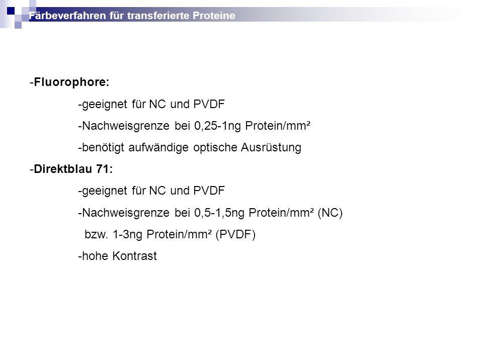 -Fluorophore: -geeignet für NC und PVDF -Nachweisgrenze bei 0,25-1ng Protein/mm² -benötigt aufwändige optische Ausrüstung -Direktblau 71: -geeignet fü