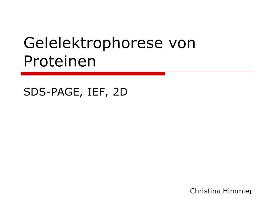 1 Gelelektrophorese von Proteinen SDS-PAGE, IEF, 2D Christina Himmler