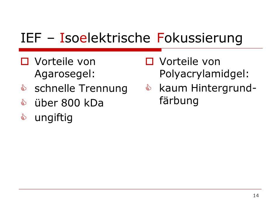 14 IEF – Isoelektrische Fokussierung Vorteile von Agarosegel: schnelle Trennung über 800 kDa ungiftig Vorteile von Polyacrylamidgel: kaum Hintergrund-
