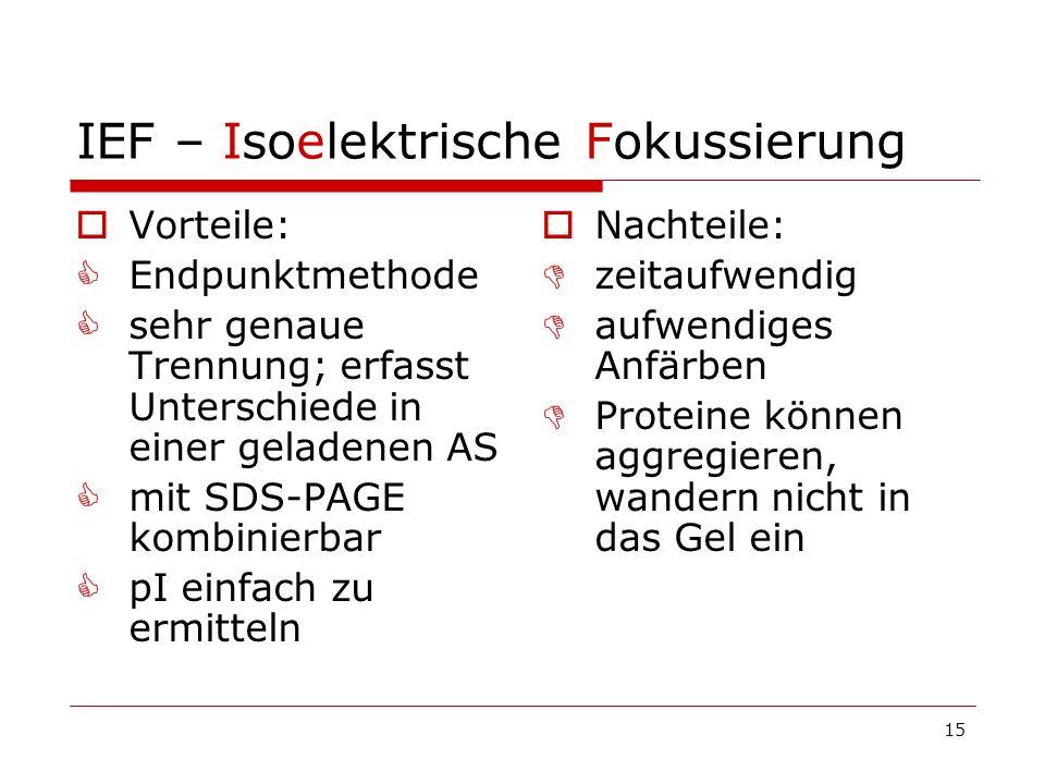 15 IEF – Isoelektrische Fokussierung Vorteile: Endpunktmethode sehr genaue Trennung; erfasst Unterschiede in einer geladenen AS mit SDS-PAGE kombinier
