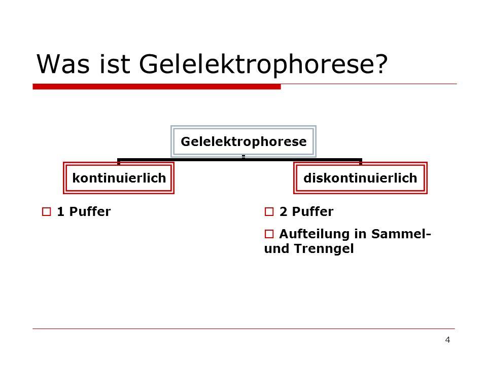 4 Was ist Gelelektrophorese? Gelelektrophorese kontinuierlichdiskontinuierlich 1 Puffer 2 Puffer Aufteilung in Sammel- und Trenngel