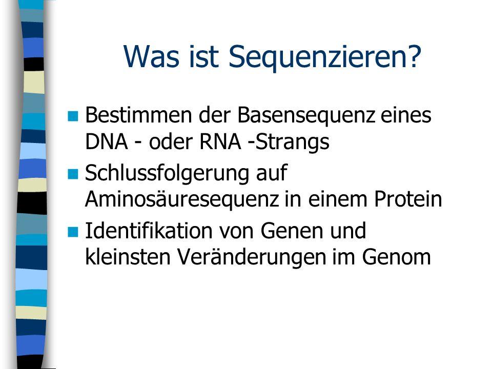 Was ist Sequenzieren? Bestimmen der Basensequenz eines DNA - oder RNA -Strangs Schlussfolgerung auf Aminosäuresequenz in einem Protein Identifikation