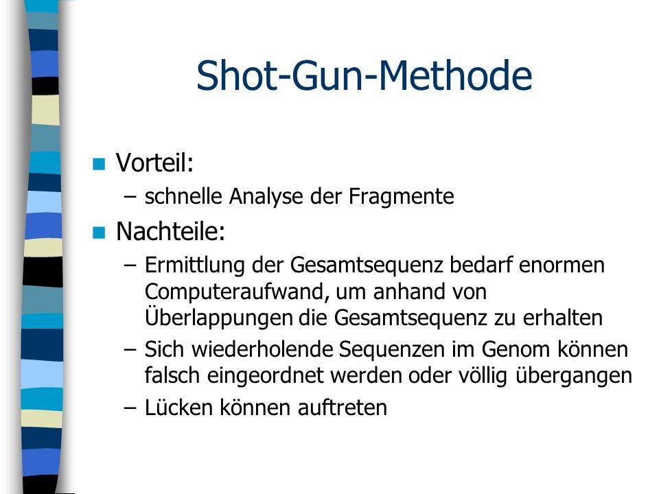 Shot-Gun-Methode Vorteil: –schnelle Analyse der Fragmente Nachteile: –Ermittlung der Gesamtsequenz bedarf enormen Computeraufwand, um anhand von Überl