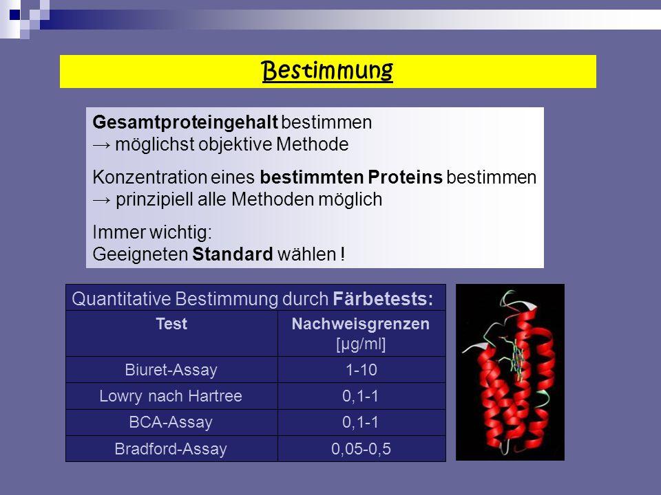 Bestimmung Gesamtproteingehalt bestimmen möglichst objektive Methode Konzentration eines bestimmten Proteins bestimmen prinzipiell alle Methoden möglich Immer wichtig: Geeigneten Standard wählen .