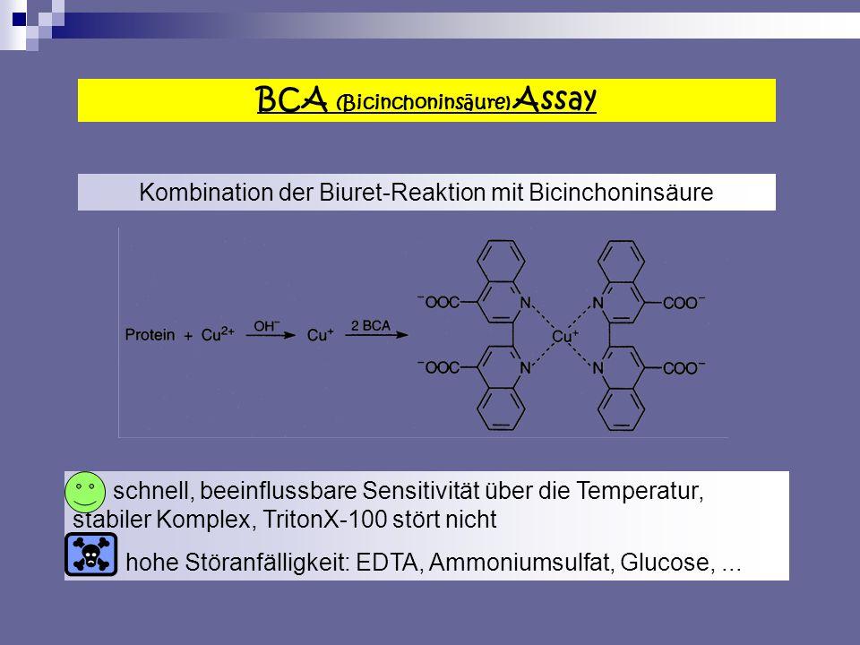 BCA (Bicinchoninsäure) Assay Kombination der Biuret-Reaktion mit Bicinchoninsäure schnell, beeinflussbare Sensitivität über die Temperatur, stabiler Komplex, TritonX-100 stört nicht hohe Störanfälligkeit: EDTA, Ammoniumsulfat, Glucose,...