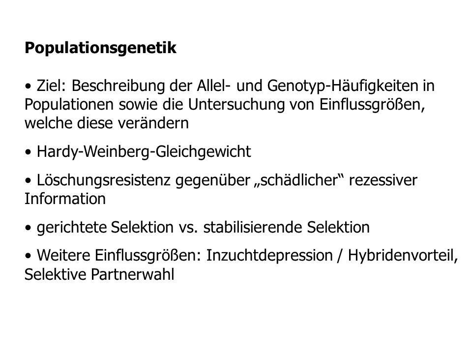 Populationsgenetik Ziel: Beschreibung der Allel- und Genotyp-Häufigkeiten in Populationen sowie die Untersuchung von Einflussgrößen, welche diese verä