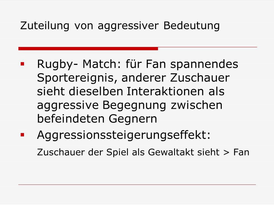 Zuteilung von aggressiver Bedeutung Rugby- Match: für Fan spannendes Sportereignis, anderer Zuschauer sieht dieselben Interaktionen als aggressive Beg