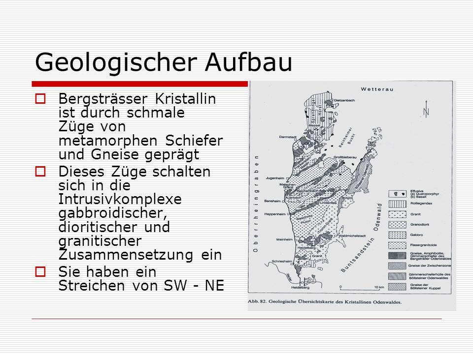Geologischer Aufbau Bergsträsser Kristallin ist durch schmale Züge von metamorphen Schiefer und Gneise geprägt Dieses Züge schalten sich in die Intrus