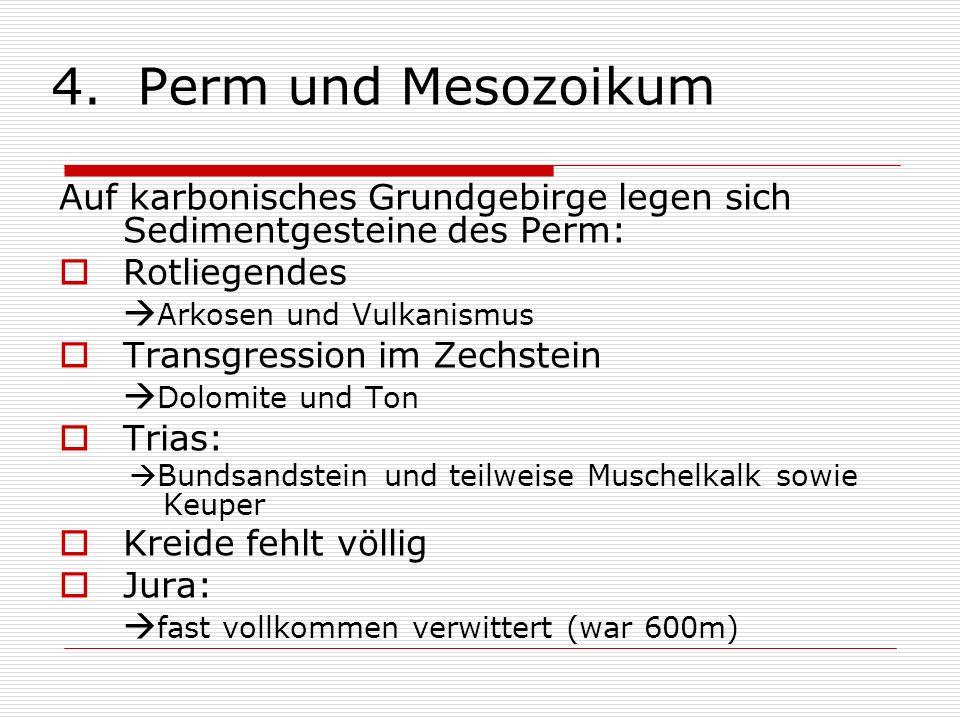 4. Perm und Mesozoikum Auf karbonisches Grundgebirge legen sich Sedimentgesteine des Perm: Rotliegendes Arkosen und Vulkanismus Transgression im Zechs