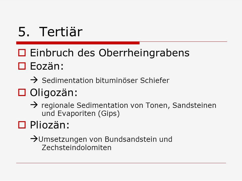 5. Tertiär Einbruch des Oberrheingrabens Eozän: Sedimentation bituminöser Schiefer Oligozän: regionale Sedimentation von Tonen, Sandsteinen und Evapor