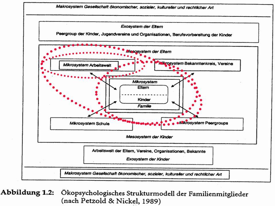 System-Taxonomie nach Bronfenbrenner Mikrosystem: Umwelt eines Individuums, mit der es direkt interagiert Mesosystem: Interaktion zweier sich überschneidender Mikrosysteme eines Individuums Exosystem: System, mit dem ein Individuum nicht direkt, aber indirekt interagiert Makrosystem: Gegebene Rahmenbeding- ungen, die alle Systeme beeinflussen